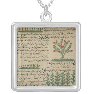 Botanical plants, illustration from 'The Silver Plated Necklace