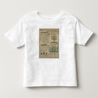 Botanical plants, illustration from 'The Toddler T-Shirt