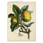 Botanical Print - Apple Card