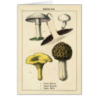 Botanical Print - British Mushrooms & Fungi Card