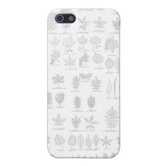 Botanical Print Hand Drawn Gray Sketch Leaf iPhone 5/5S Cases