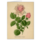 Botanical Print - Tea Rose Card