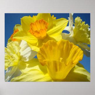 Botanical prints Framed Art Gifts Yellow Daffodils