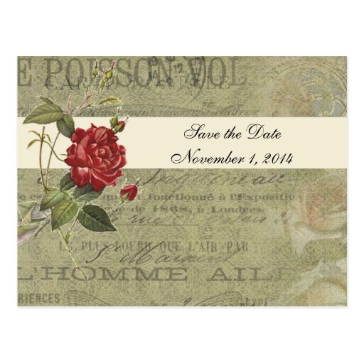 Botanical Rose French Vintage Paper Save the Date Postcard