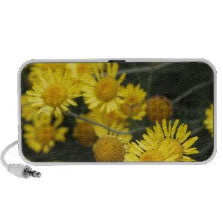 Botanical Series Mini Speaker