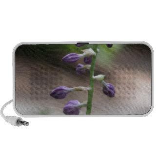 Botanical Series iPod Speaker