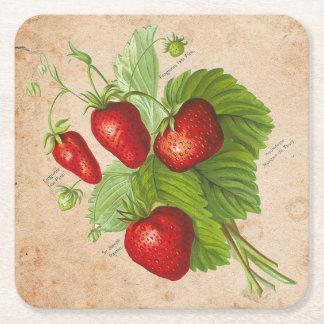 Botanical Strawberry Drink Coasters (Set of 6)