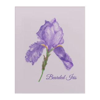 Botanical Style Purple Iris, Colored Pencil Art