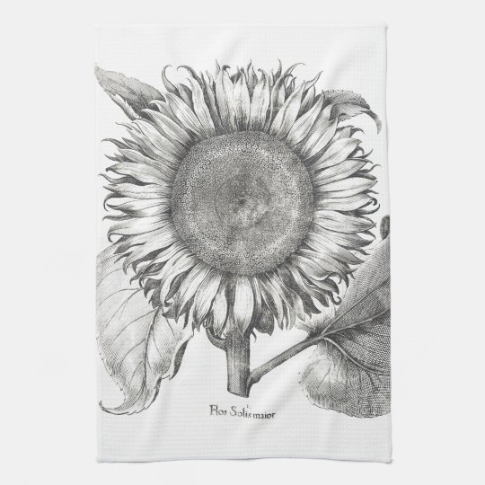 Botanical Sunflower Floral Flower Kitchen Towels
