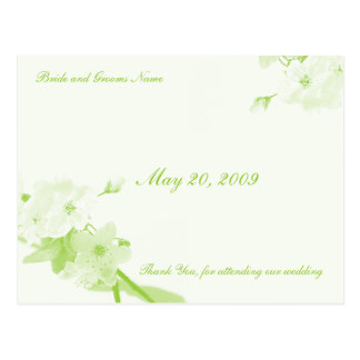 Botanical (Thank You Card) Postcard