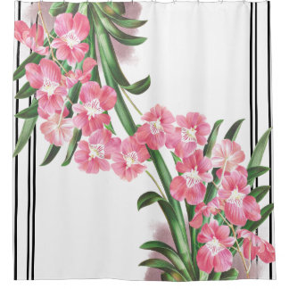 Botanical Tropical Orchid Flowers Stripes Curtain Shower Curtain
