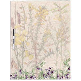 Botanical Vetch Broom Flowers Dry Erase Board