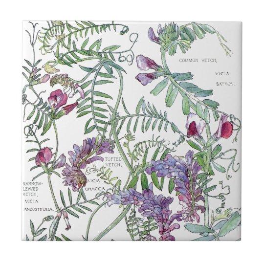 Botanical Vetch Wildflower Flowers Tile