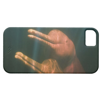 Boto, or Amazon River Dolphin (Inia geoffrensis) iPhone 5 Case