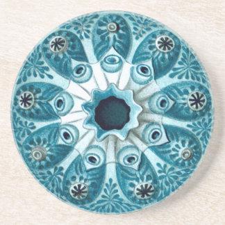 Botryllus Polycyclus Ernst Haeckel Fine Art Beverage Coaster