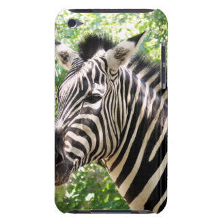 Botswana iPod Case-Mate Cases