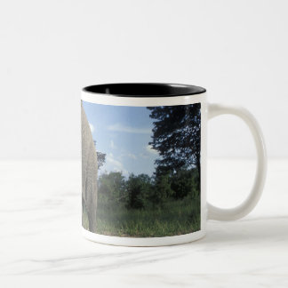 Botswana, Chobe National Park, Aggressive Bull Two-Tone Coffee Mug