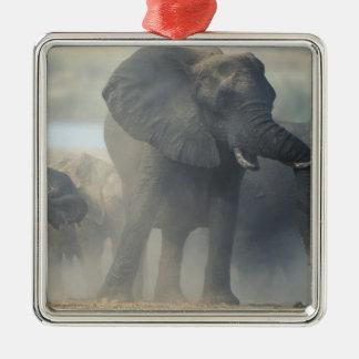 Botswana, Chobe National Park, Elephant herd 2 Christmas Ornament