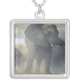 Botswana, Chobe National Park, Elephant herd 2 Silver Plated Necklace