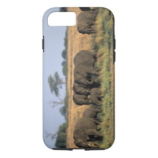 Botswana, Chobe National Park, Elephant herd iPhone 8/7 Case