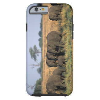 Botswana, Chobe National Park, Elephant herd Tough iPhone 6 Case
