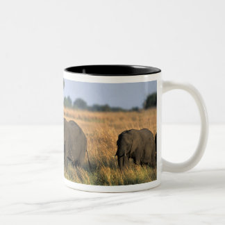 Botswana, Chobe National Park, Elephant herd Two-Tone Coffee Mug