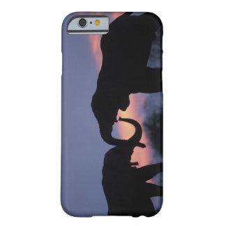 Botswana, Chobe National Park, Elephants Barely There iPhone 6 Case