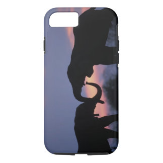 Botswana, Chobe National Park, Elephants iPhone 8/7 Case
