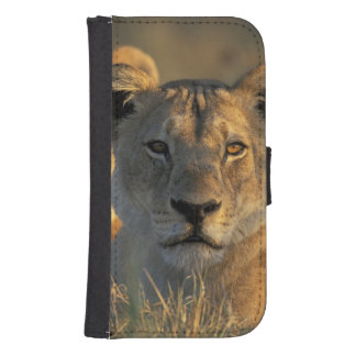 Botswana, Chobe National Park, Lionesses Samsung S4 Wallet Case