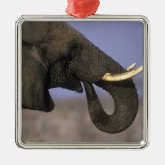 Botswana, Moremi Game Reserve, Bull Elephant Christmas Ornament