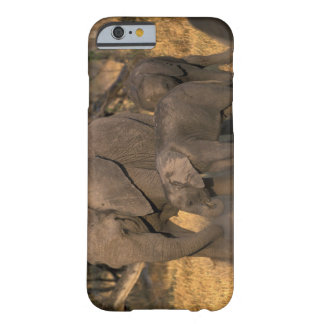 Botswana, Moremi Game Reserve, Elephant herd Barely There iPhone 6 Case