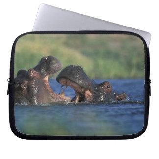 Botswana, Moremi Game Reserve, Hippopotami Laptop Sleeve