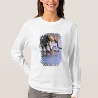 Botswana, Moremi Game Reserve, Young Elephant T-Shirt
