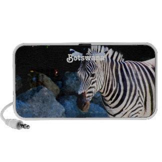 Botswana Zebra Notebook Speakers