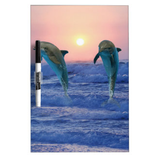 Bottlenose Dolphin at Sunrise Dry Erase Board