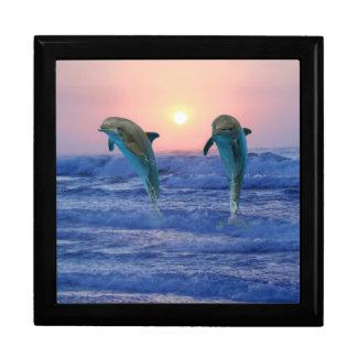 Bottlenose Dolphin at Sunrise Gift Box