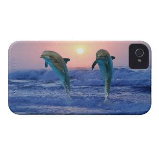Bottlenose Dolphin at Sunrise iPhone 4 Case