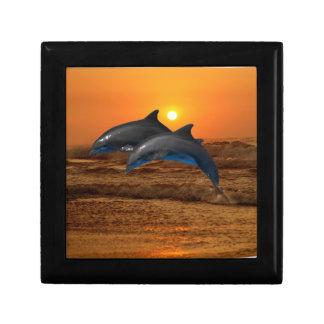 Bottlenose Dolphin at Sunset Gift Box