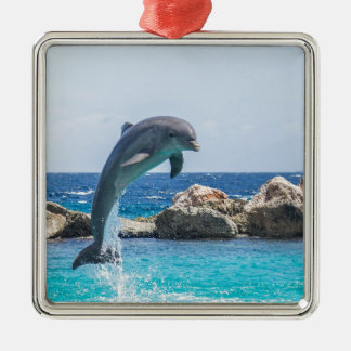 Bottlenose Dolphin Silver-Colored Square Decoration