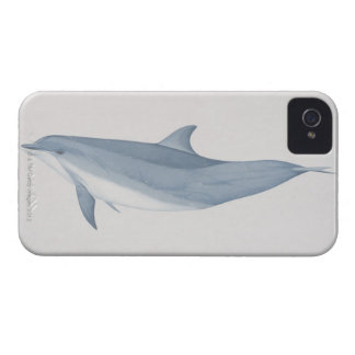 Bottlenose Dolphin iPhone 4 Case-Mate Case