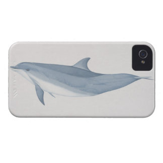 Bottlenose Dolphin iPhone 4 Cover