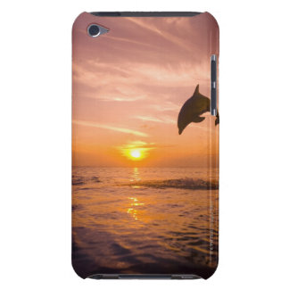 Bottlenose Dolphin jumping 2 Barely There iPod Cases