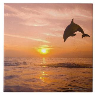 Bottlenose Dolphin jumping 2 Large Square Tile