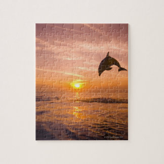 Bottlenose Dolphin jumping 2 Puzzles