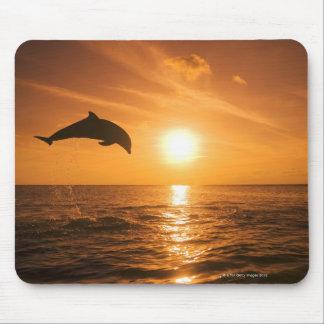 Bottlenose Dolphin jumping Mouse Mat