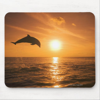 Bottlenose Dolphin jumping Mousepad