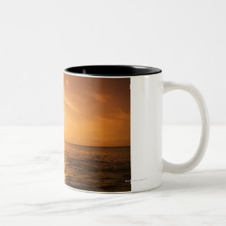 Bottlenose Dolphin jumping Two-Tone Coffee Mug