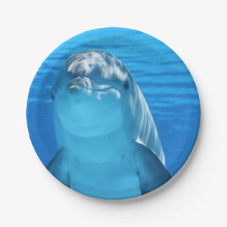 Bottlenose Dolphin looks at the camera under water Paper Plate