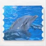 Bottlenose Dolphin Mouse Pad