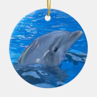 Bottlenose Dolphin Ornament
